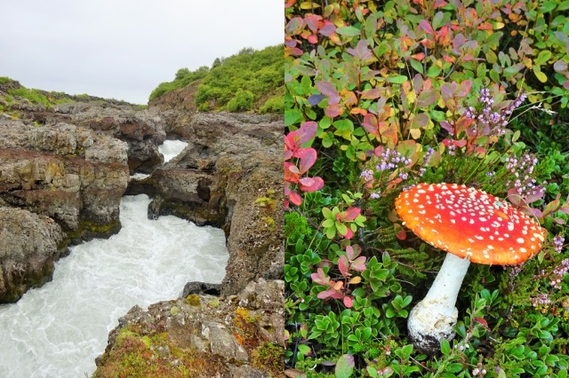 Taking in the fallen arch of Barnafoss (left) & Colourful, but probably not a wise addition to our lunch (right)
